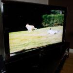 TVn fungerar igen